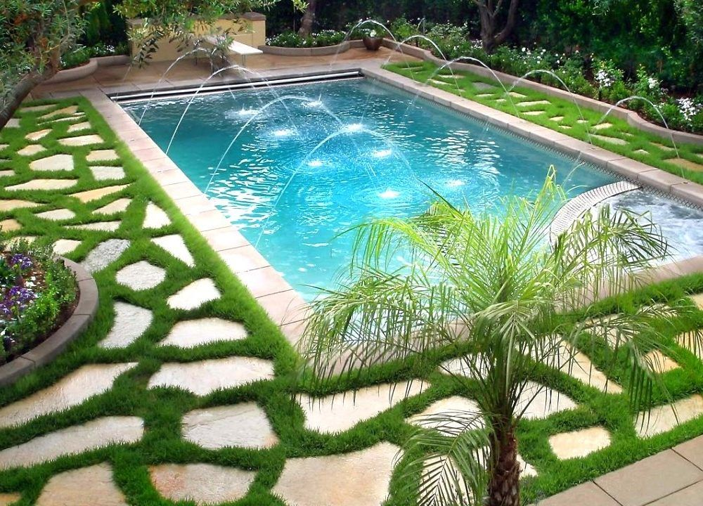 pool landscape with plants around